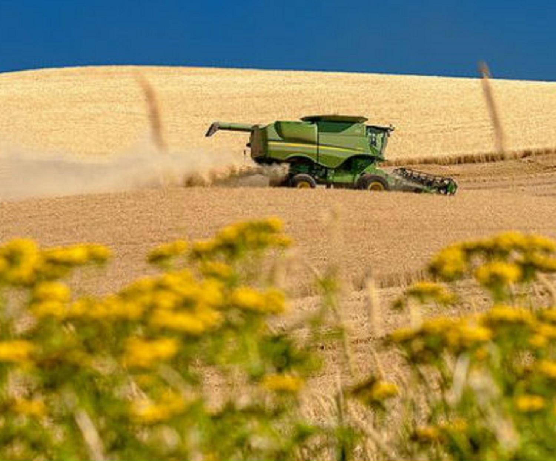 Italia-determinata-a-non-tagliare-le-emissioni-in-agricoltura