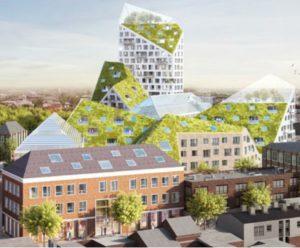 Eindhoven-si-fa-bella-con-tetti-verdi-rinnovabili-e-luce-naturale