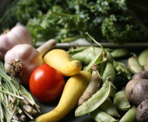 Così-lagricoltura-biologica-può-nutrire-il-mondo-nel-2050-2-e1510688356694