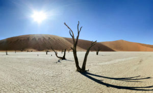 Un-quarto-del-pianeta-rischia-laridificazione-3